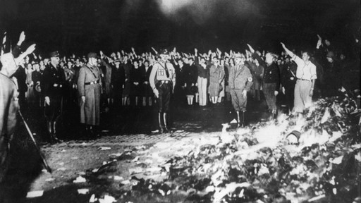 1buecherverbrennung-1933-berlin100 v-image512_-6a0b0d9618fb94fd9ee05a84a1099a13ec9d3321