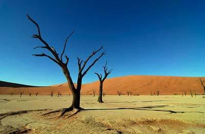 pustinja rs